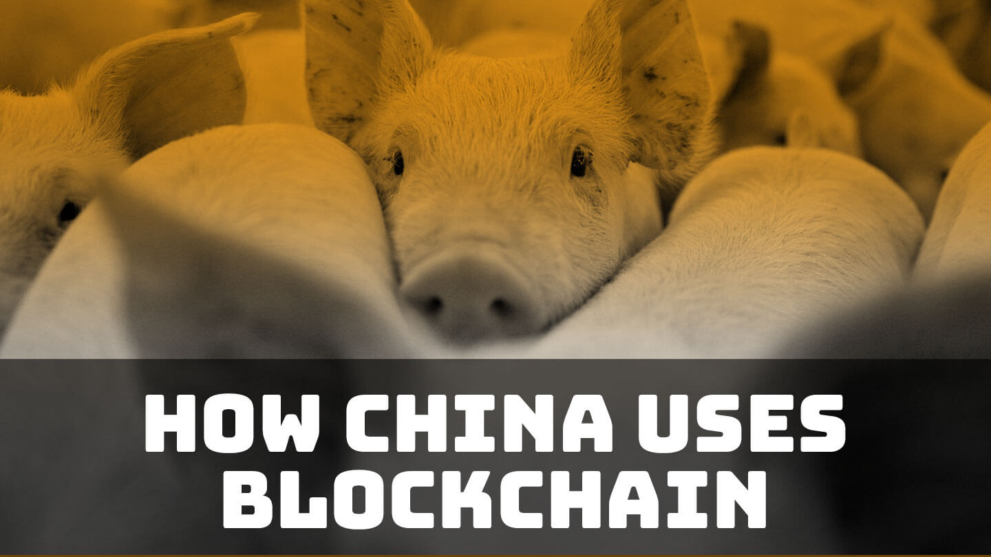Blockchain used for pig farming and pledging party loyalty in China | Abacus