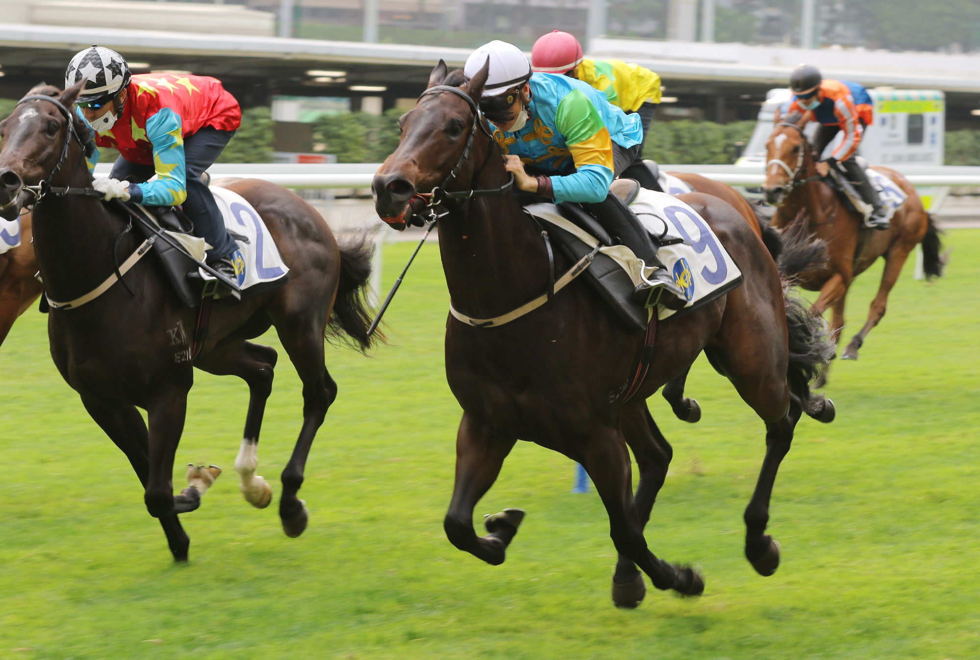 Shenron runs on under Blake Shinn in a trial at Happy Valley last month.