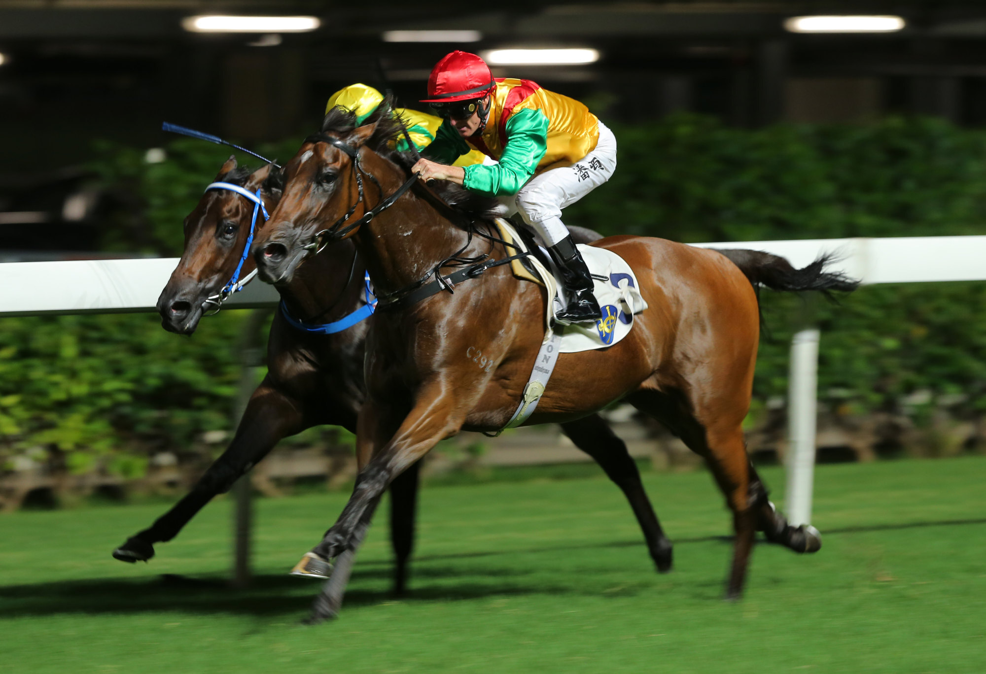 Francis Lui's Highland Fortune salutes at Happy Valley last season.