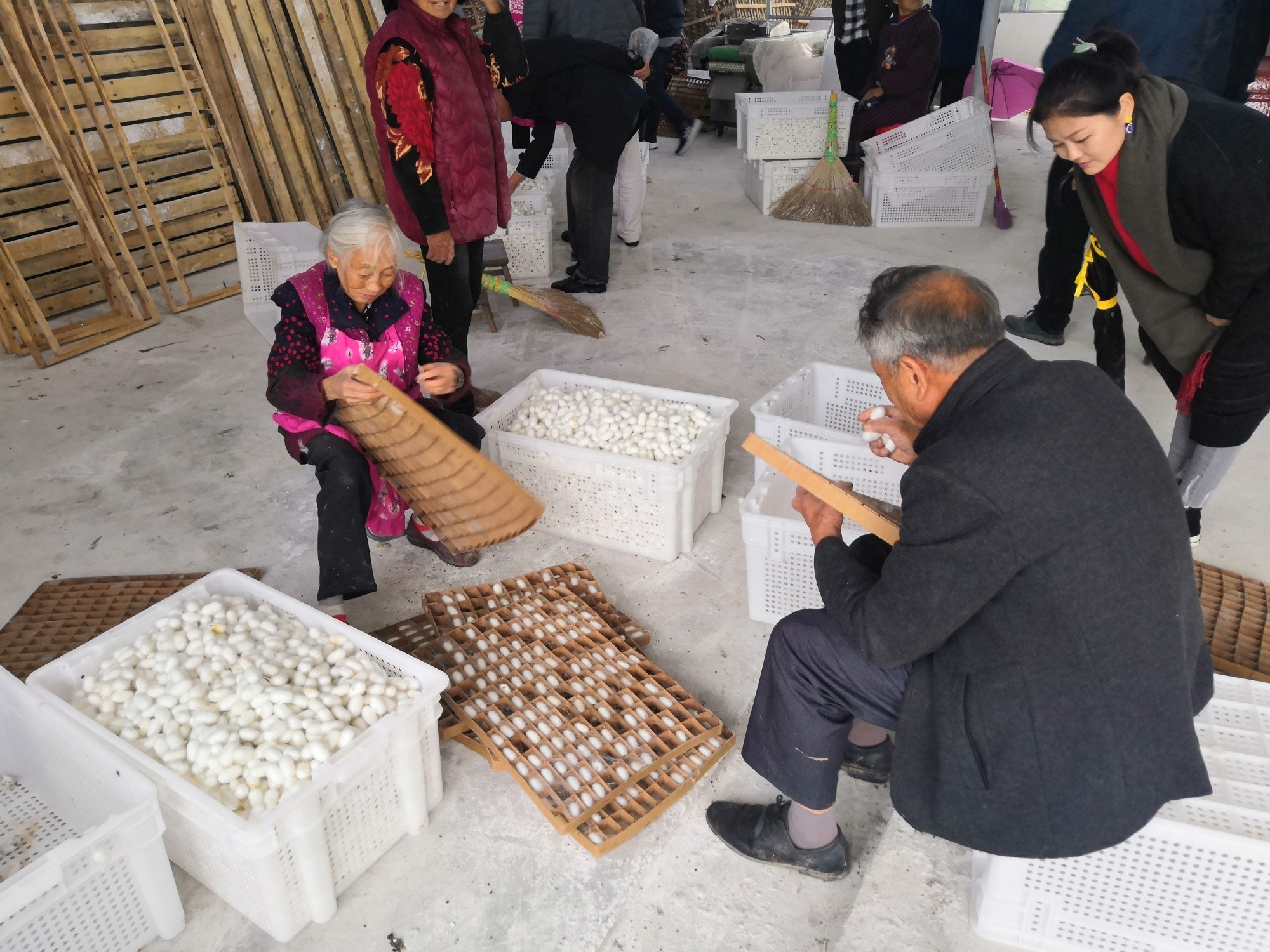 Before Bombyx arrived, the local farmers sold silk cocoons to a range of buyers, for the best prices they could get.