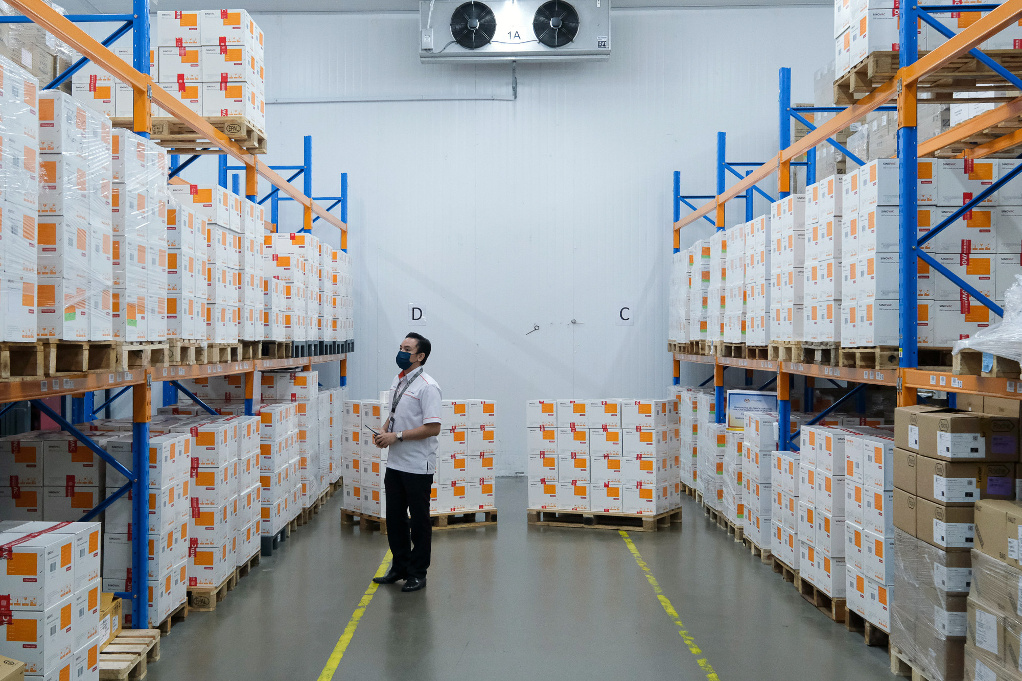 Boxes of the Sinovac Covid-19 vaccine in a warehouse in Shah Alam, Selangor. Photo: Bloomberg