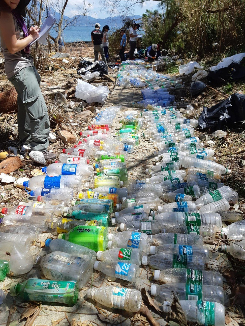Volunteers collect plastic bottles that washed up on Tung Ping Chau, an uninhabited island in Hong Kong's northeastern waters. Photo: Facebook