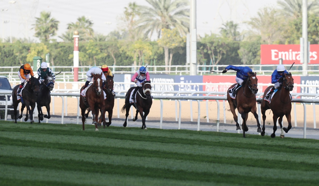 Cross Counter (blue cap) kicks clear to win the Dubai Gold Cup earlier this year. Photo: Kenneth Chan