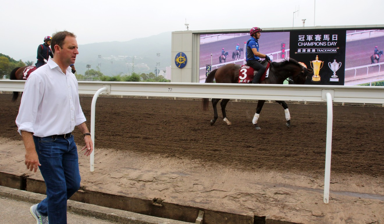 Trainer Charlie Appleby looks over Blue Point as he works on the Sha Tin all-weather track last year.