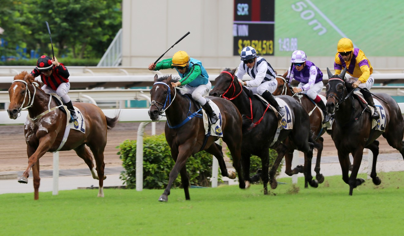 Rise High takes control in the Premier Plate.