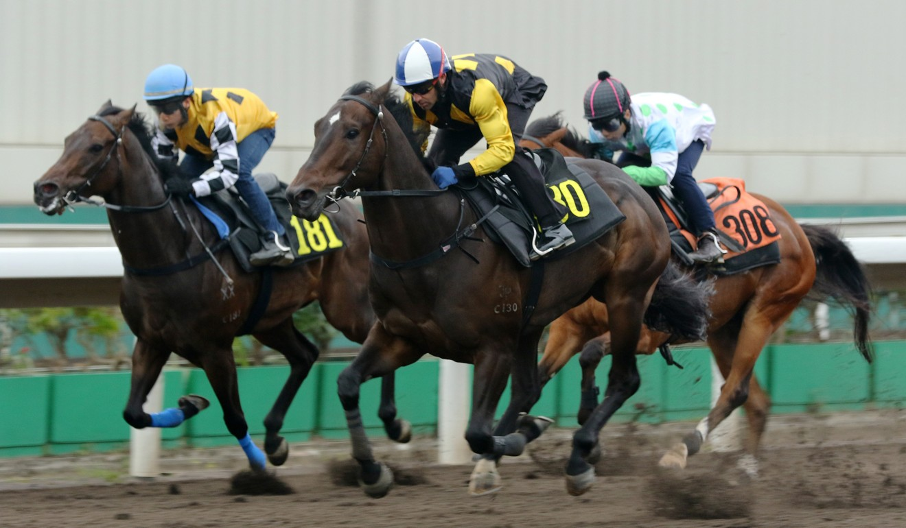 King's Trooper (outside), ridden by Neil Callan, wins a barrier trial at Sha Tin.