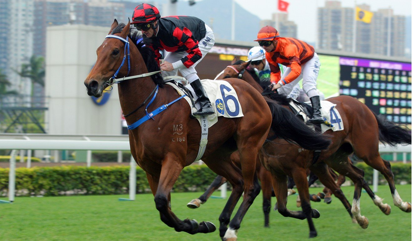 Dancing Fighter wins over 1,000m at Sha Tin on debut in December.