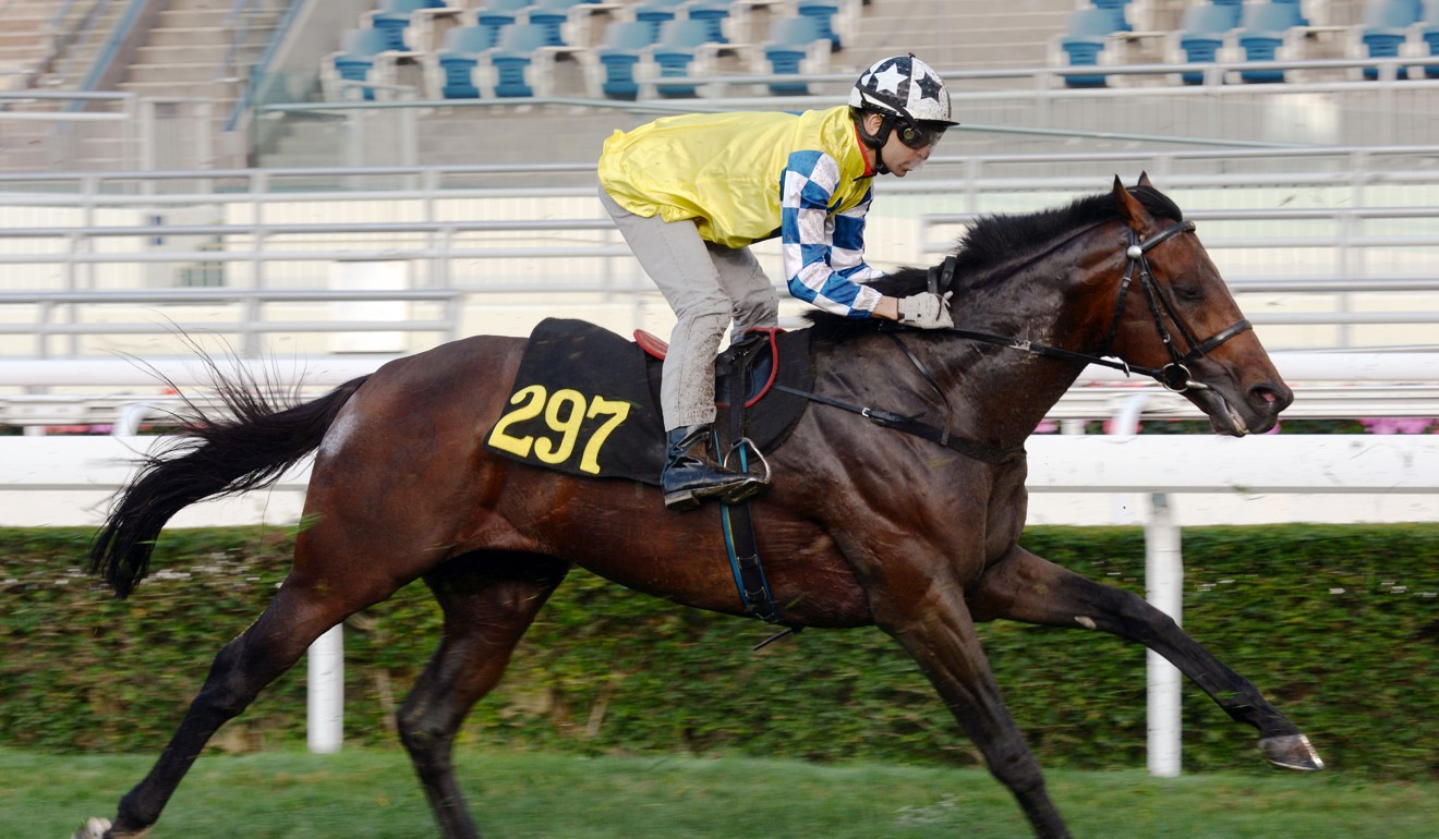 Chefano stretches out during a barrier trial at Sha Tin.