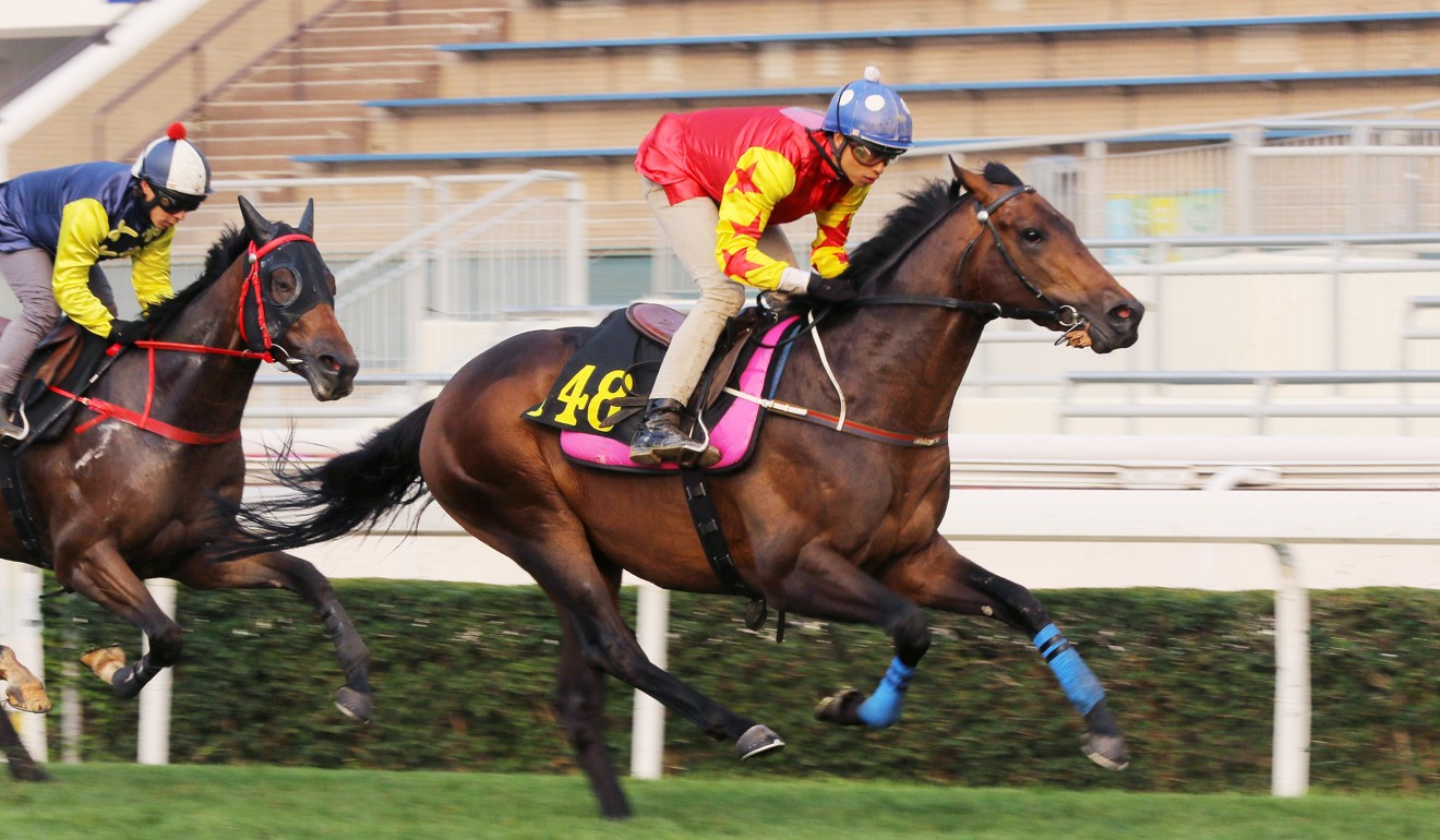 Farhh Above trials up the straight at Sha Tin strongly.