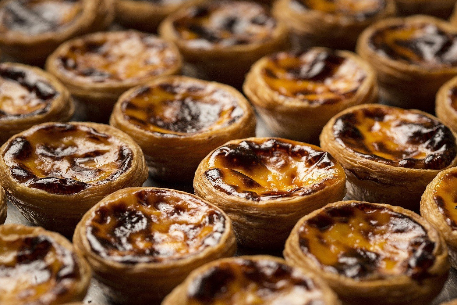 Breaking Hong Kong egg tart news: Lord Stow's is back, now at the