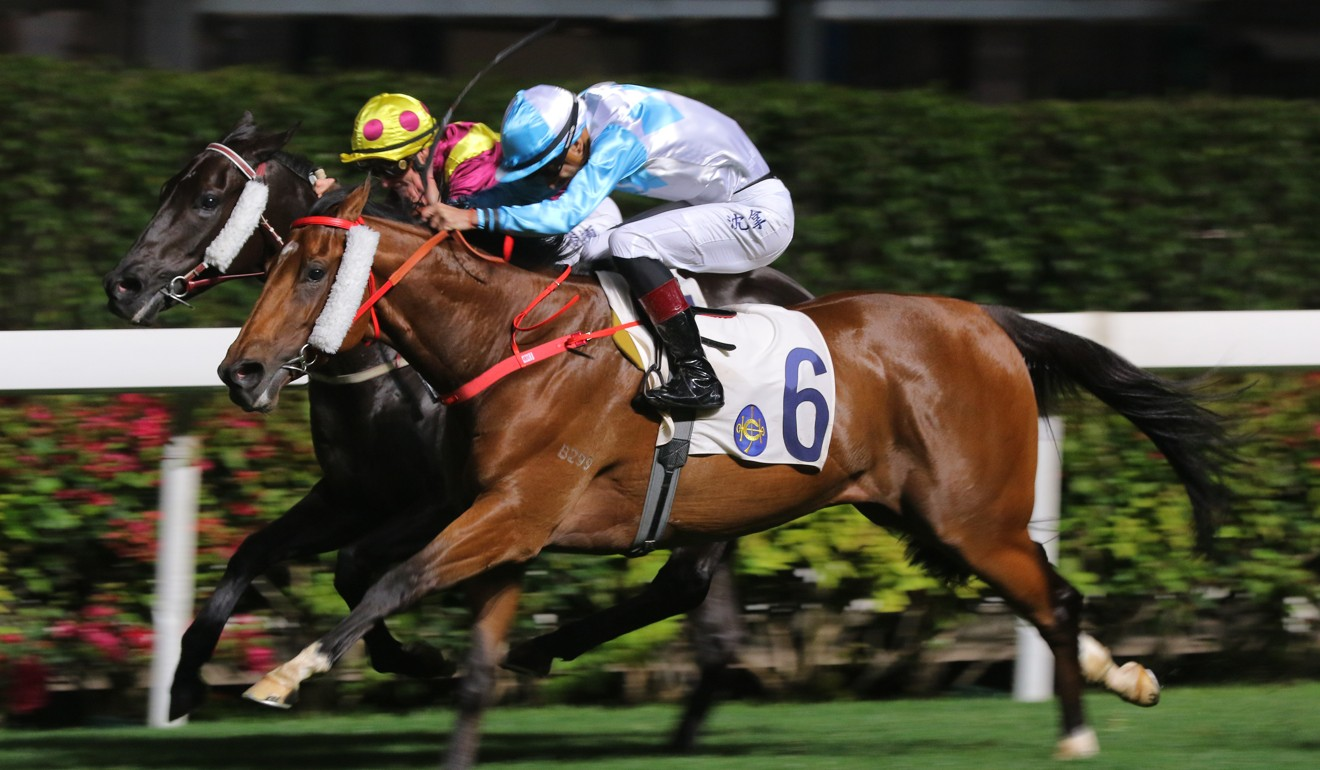 Alberto Sanna pushes out Ruletheroost to victory at Happy Valley this season.