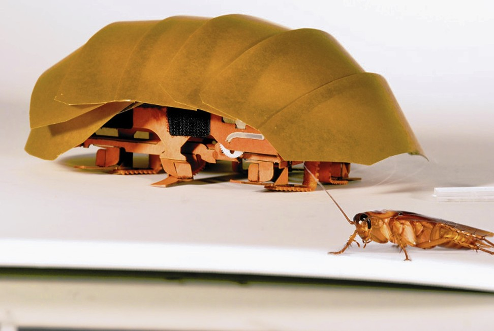 In 2017, researchers of the PolyPEDAL Lab at the University of California, Berkeley, designed a compressible robot, CRAM, that was about 20 times the size of a real cockroach. Photo: Handout