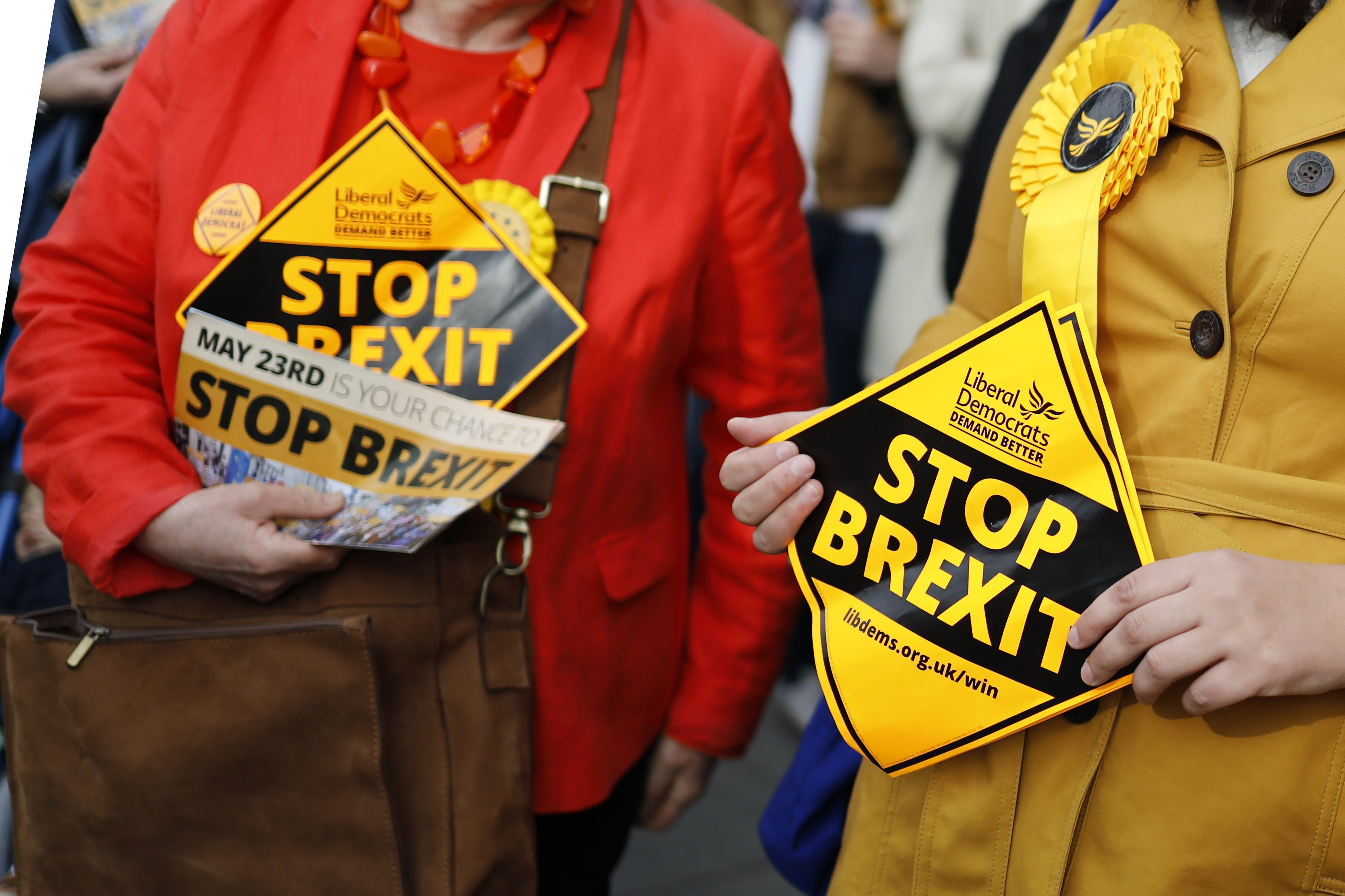 Can UK's Liberal Democrats stop Brexit? | South China Morning Post