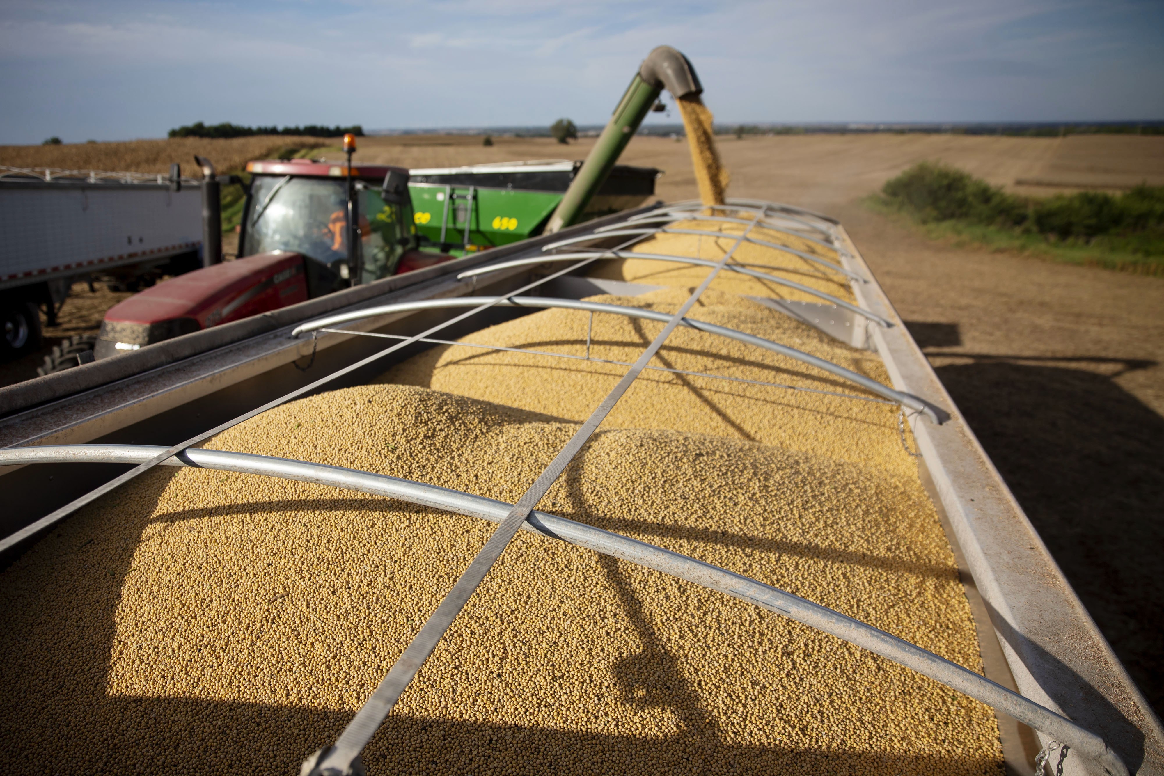 China turns to Argentine soy meal in fresh blow to US