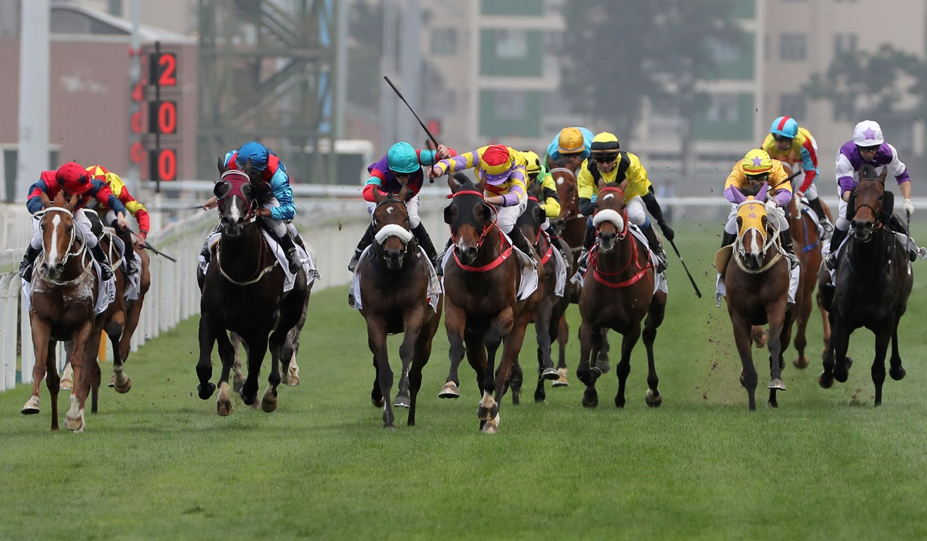 Horses compete in a race at Sha Tin.
