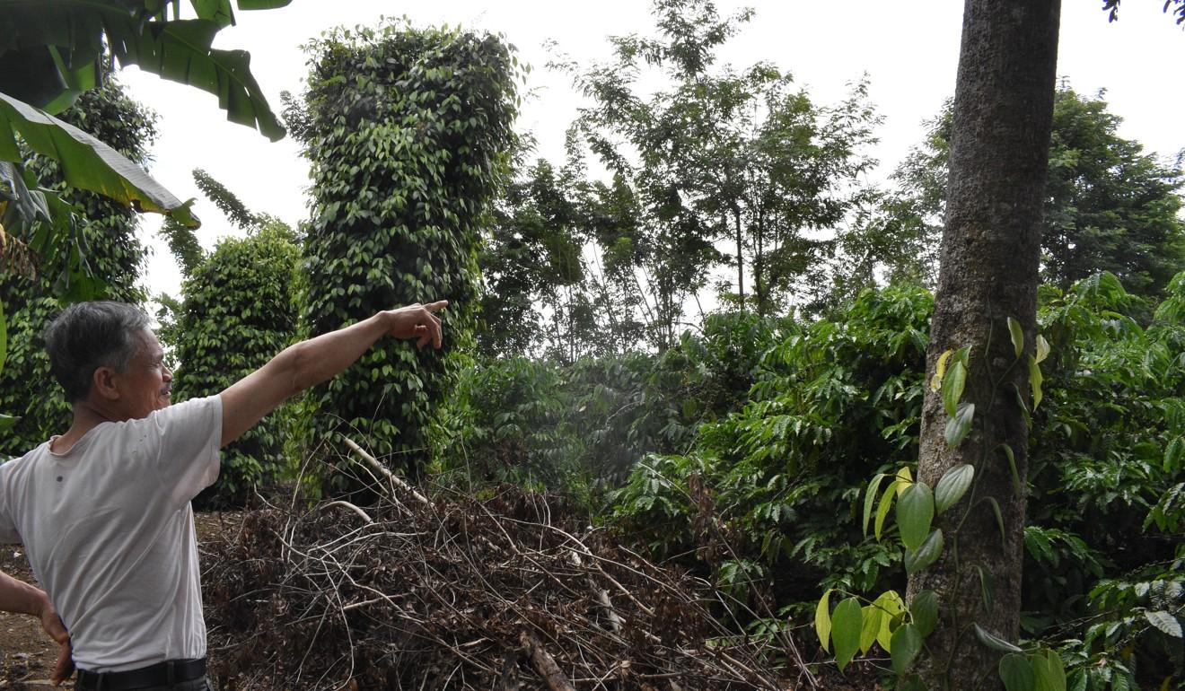 How coffee helped a Vietnamese war veteran raise his family