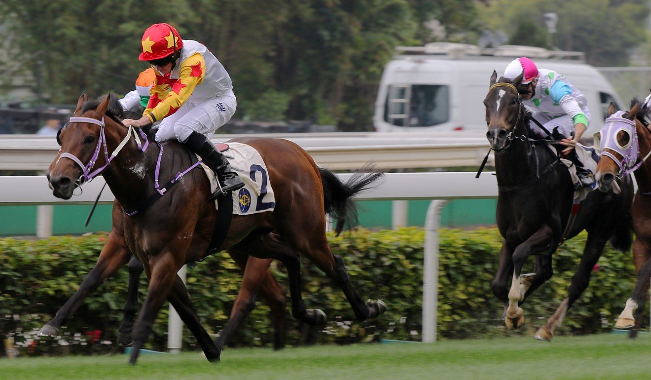 Mr Croissant salutes at Sha Tin in March.