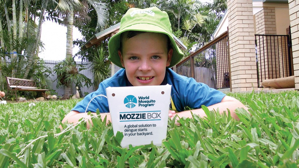 A boy in Townsville, Australia, takes part in the Mozzie Box project. Photo: World Mosquito Program