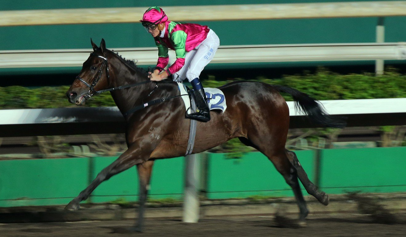 Elusive State coasts to one of his four wins last season.