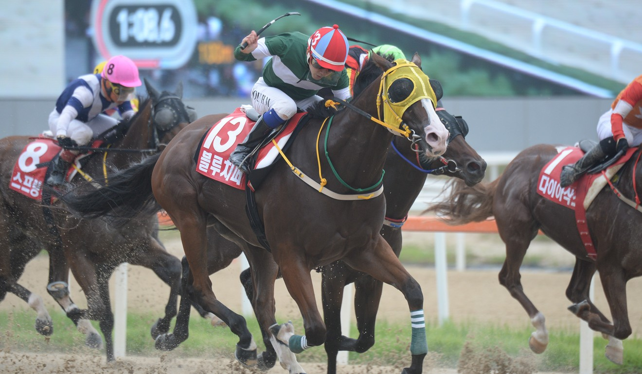 Blue Chipper races away to win the G1 Korea Spring in Seoul on Sunday.