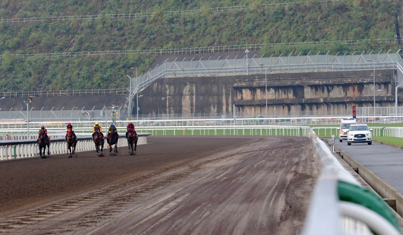Horses trial on the all-weather surface at the Conghua training facility. Photo: Kenneth Chan