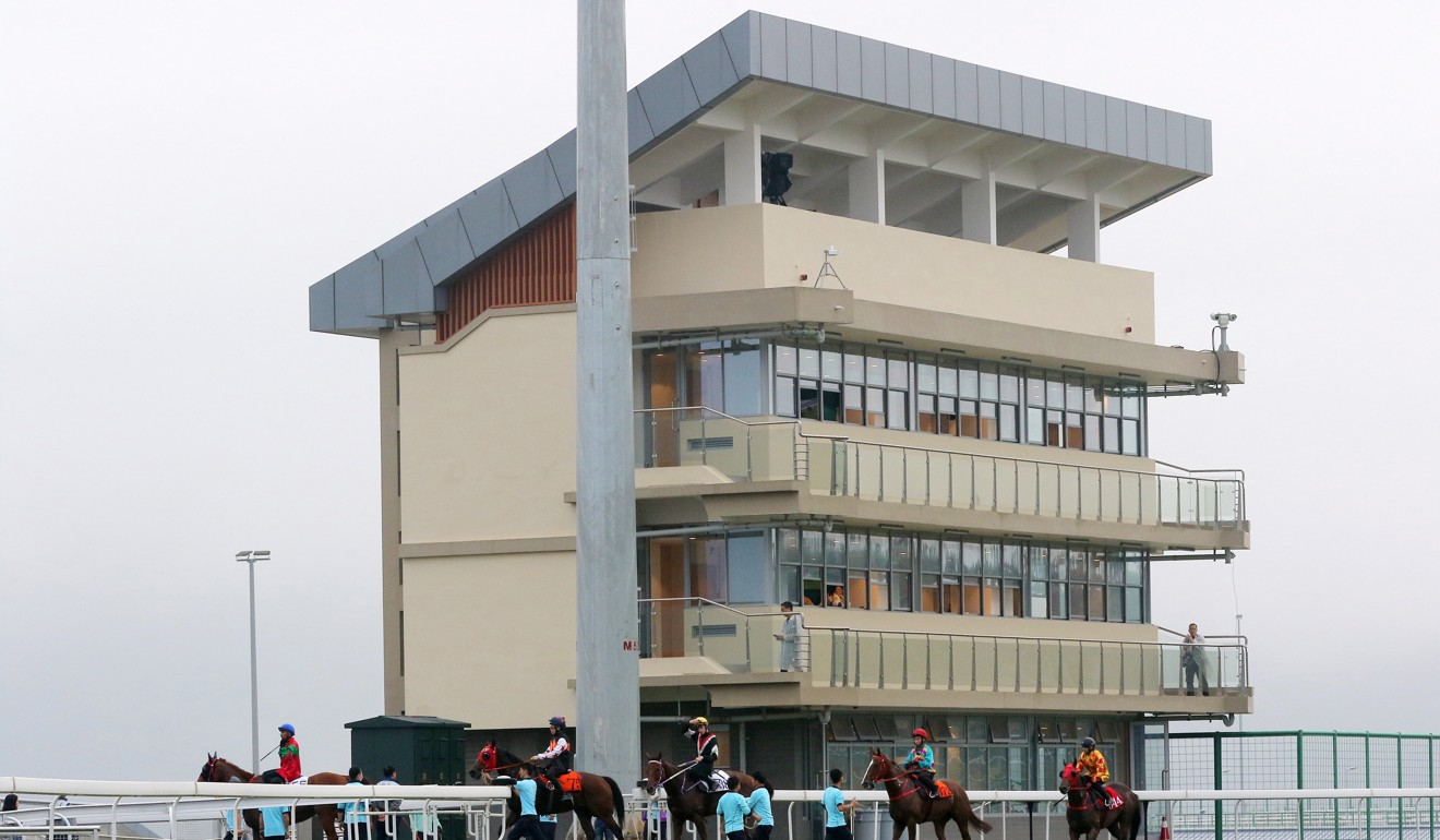 Horses go onto the track at the Conghua training centre. Photo: Kenneth Chan
