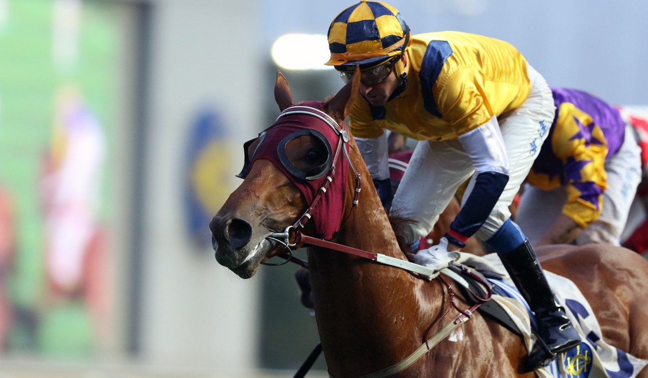 Styling City wins under Douglas Whyte at Sha Tin last season.