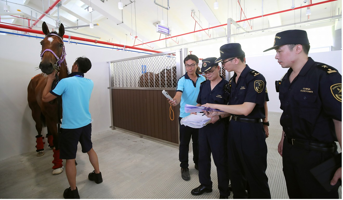 Horses inspected by biosecurity staff at Conghua. Photo: HKJC