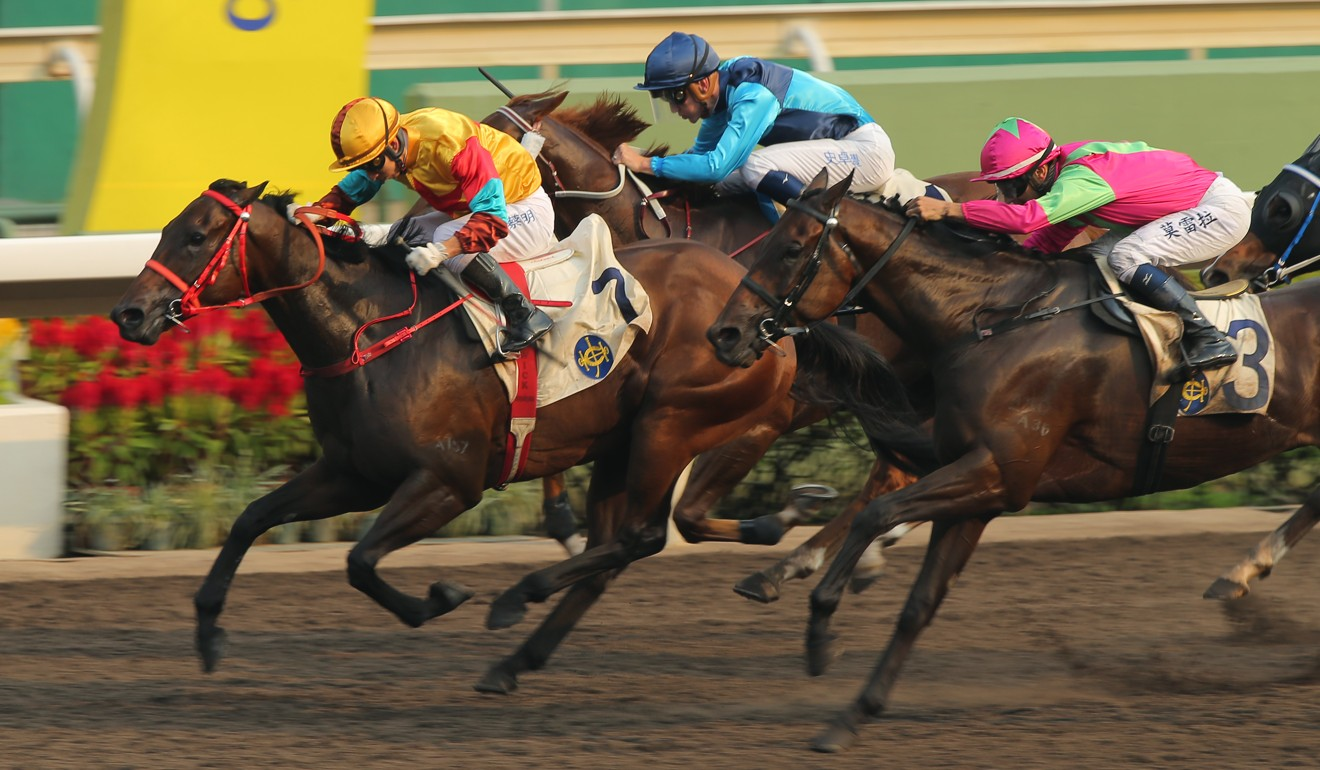Sunny Boy (blue silks) runs into third at Sha Tin on September 8.