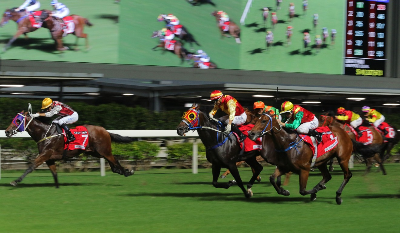 Horses thunder down the straight at Happy Valley.