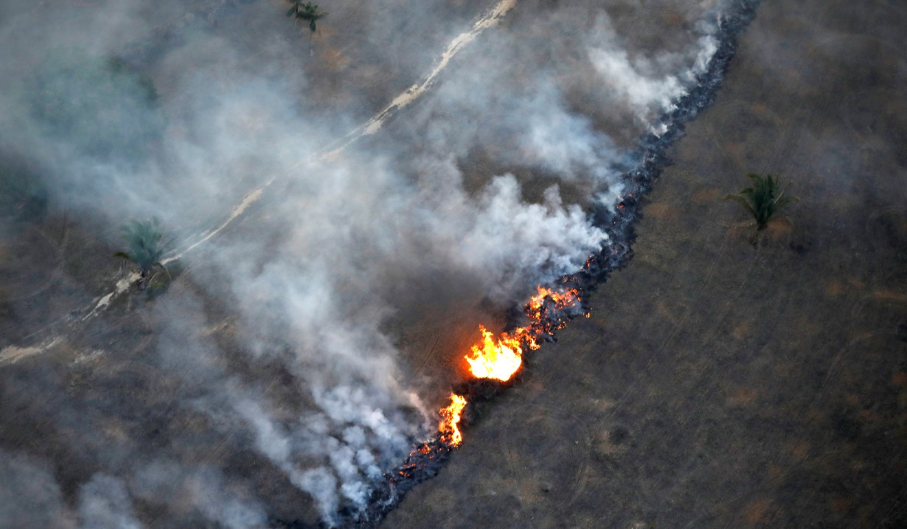 Amazon in flames: 110 football fields of land cleared every hour