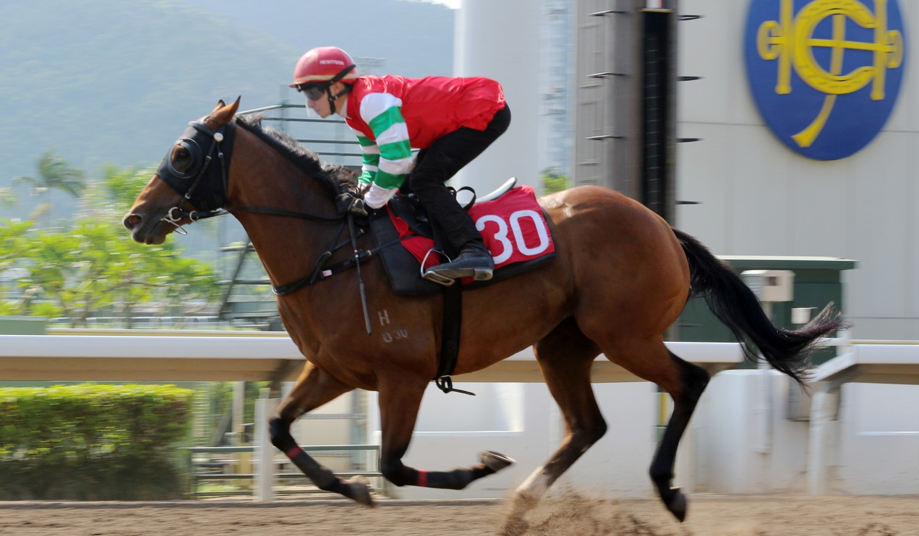 Lyle Hewitson trials on the Sha Tin all-weather track on Tuesday morning.