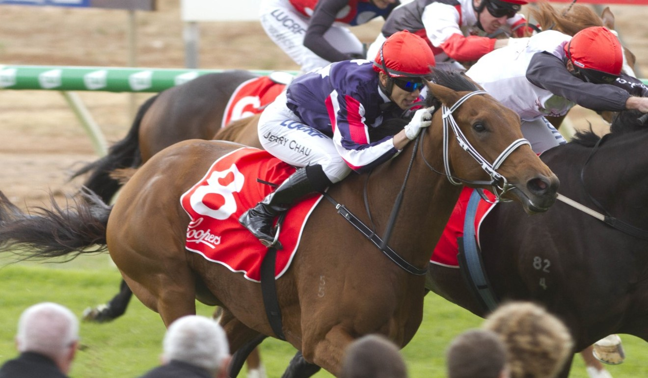 Jerry Chau lands his first winner aboard Serious Spender at Balaklava in May.