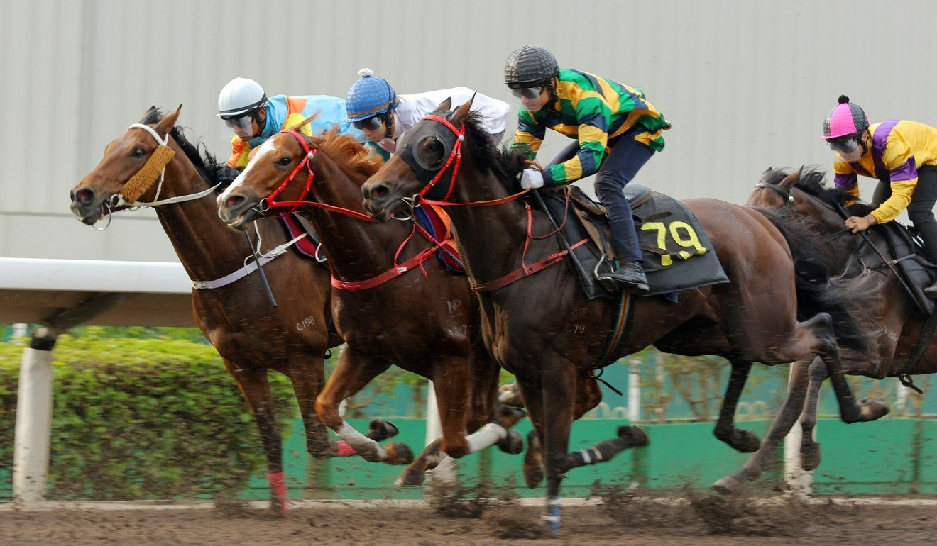 Grant van Niekerk trials Furore on the Sha Tin all-weather track this season.