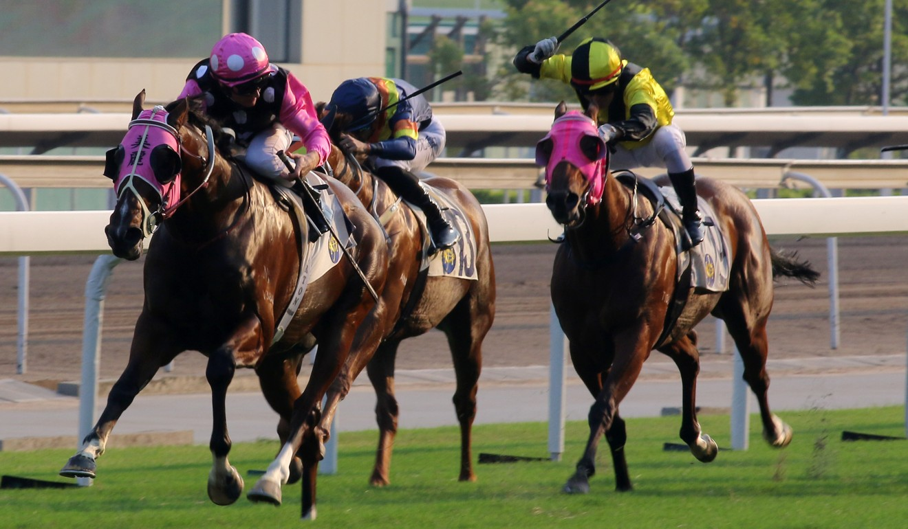 Beauty Generation wins last year's Celebration Cup.
