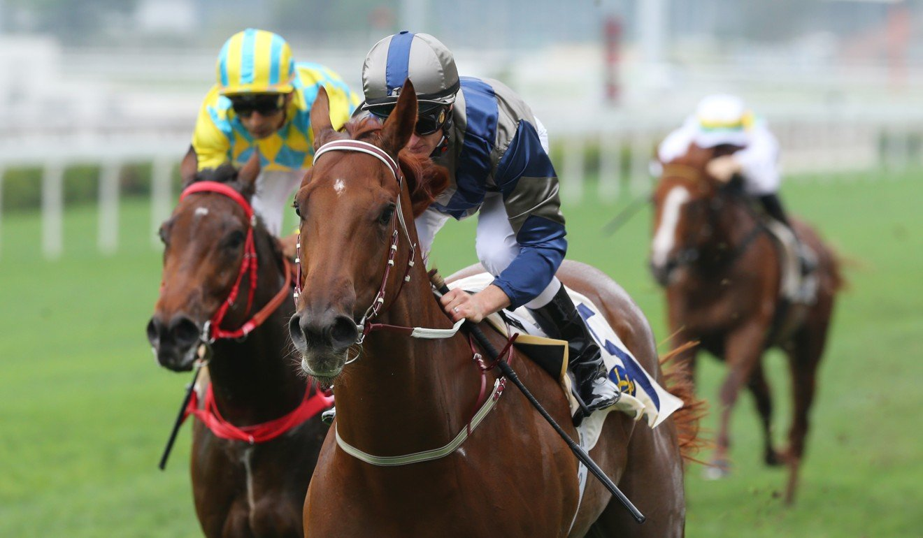Aethero returns to the races next Saturday.