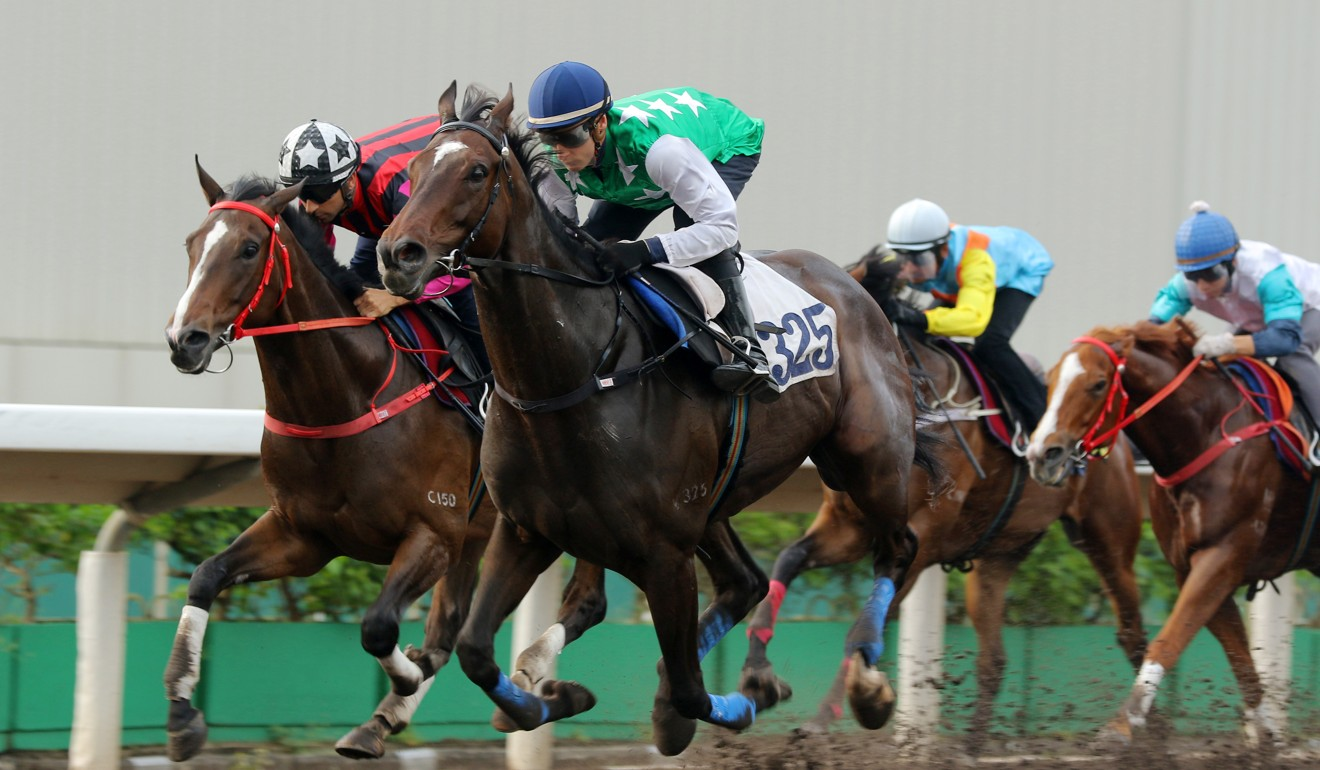 Blake Shin trials Pakistan Star for the first time last month.