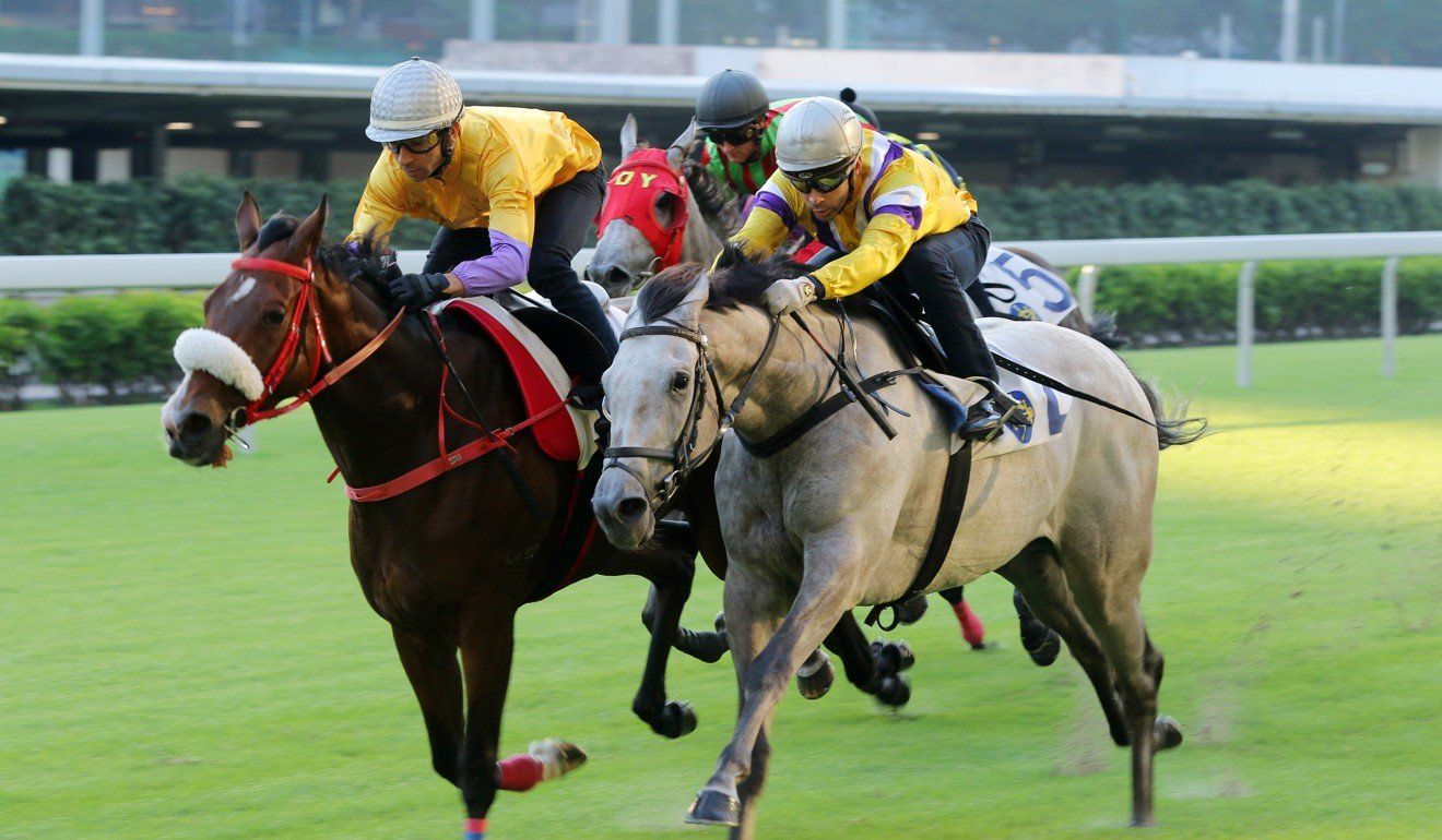 Playa del Puente (inside) wins a barrier trial at Happy Valley last month.