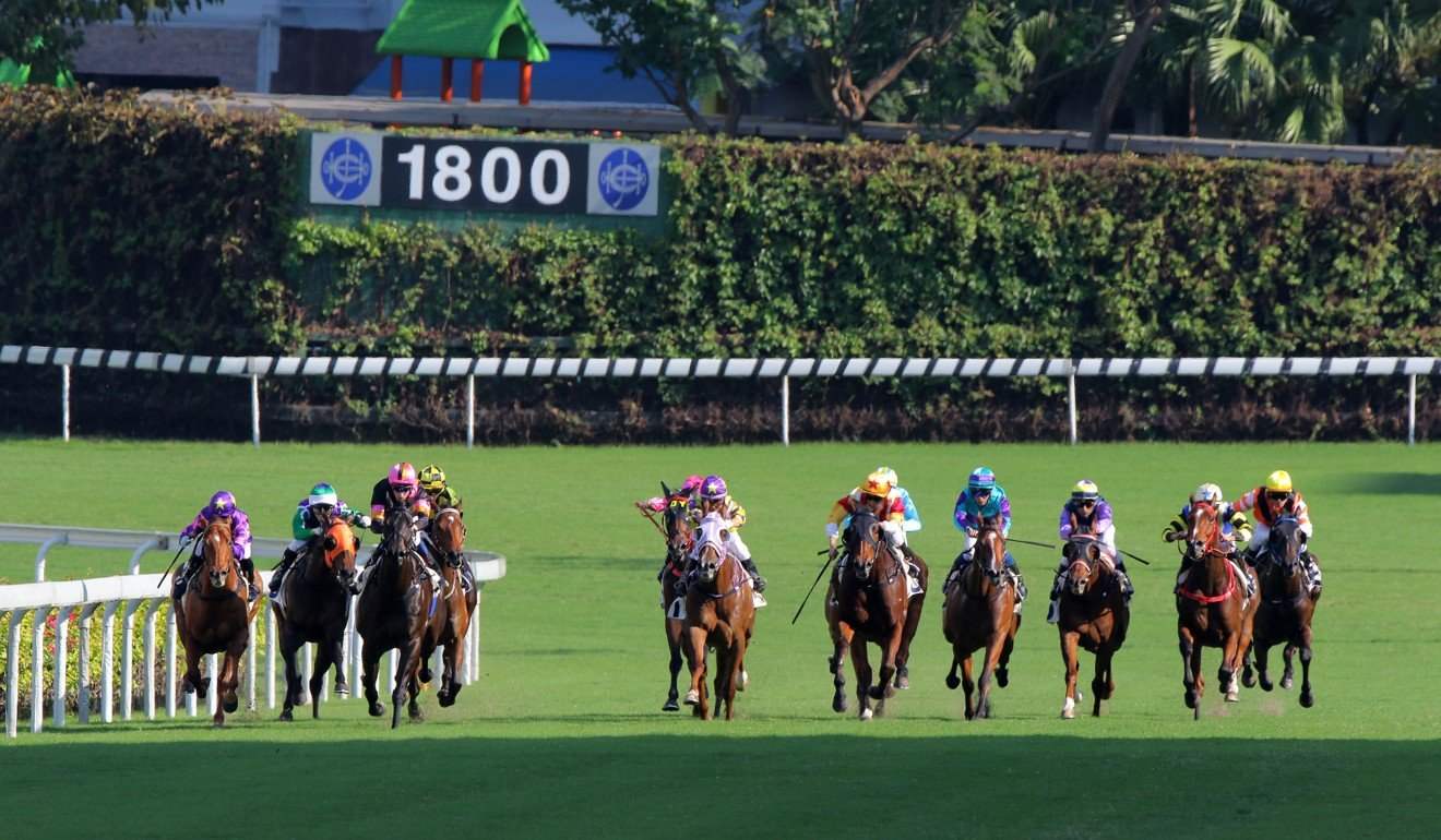 Horses race down the straight at last year's day meeting at Happy Valley.