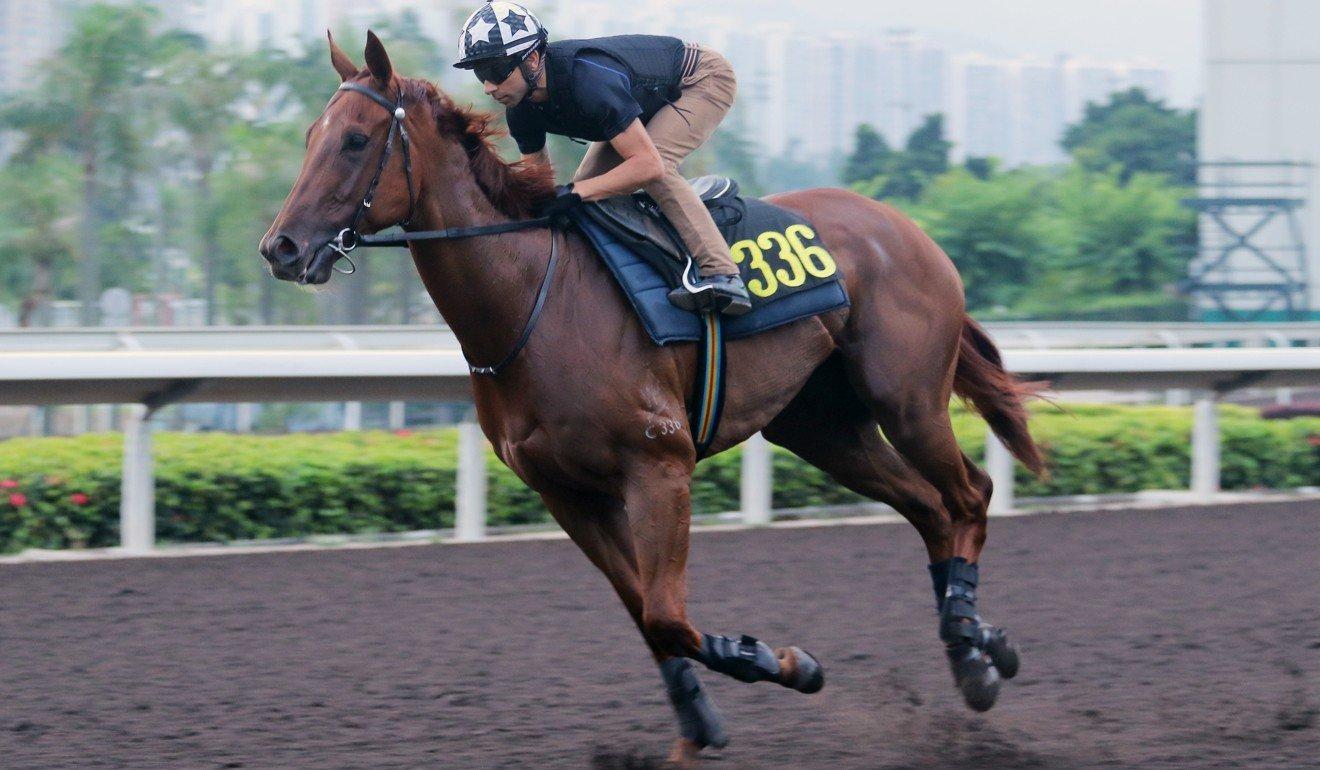 Joao Moreira rides Aethero in a gallop at Sha Tin on Thursday.