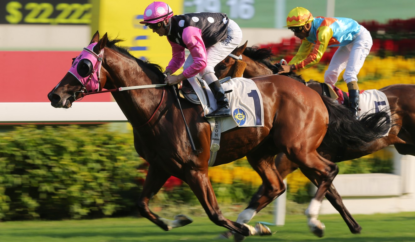 Beauty Generation wins the Celebration Cup earlier this month.