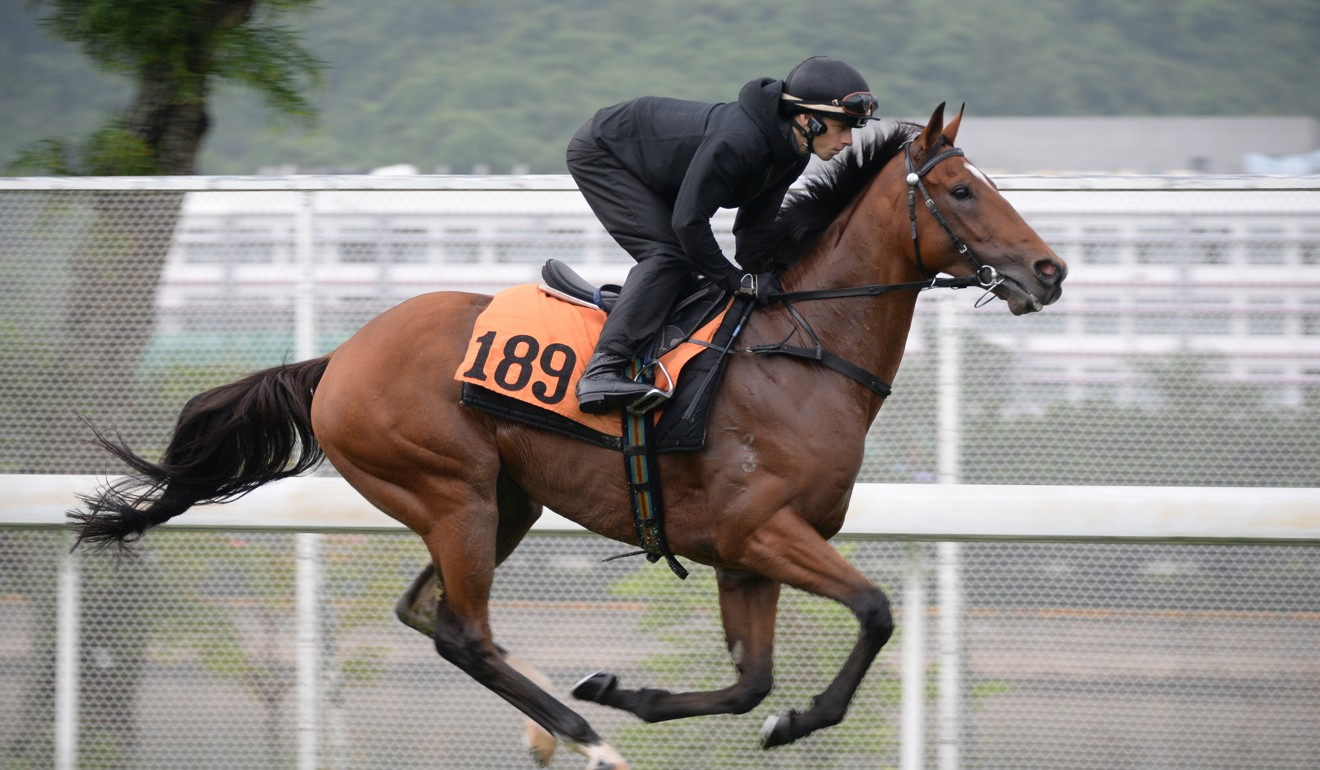 Jockey Lyle Hewitson gallops Electric Lightning at Sha Tin on Monday.