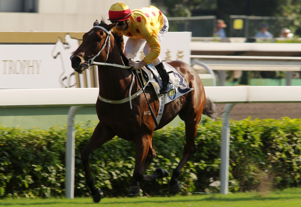 Richard Gibson expects a strong showing from Gold Mount in the Caulfield Cup.