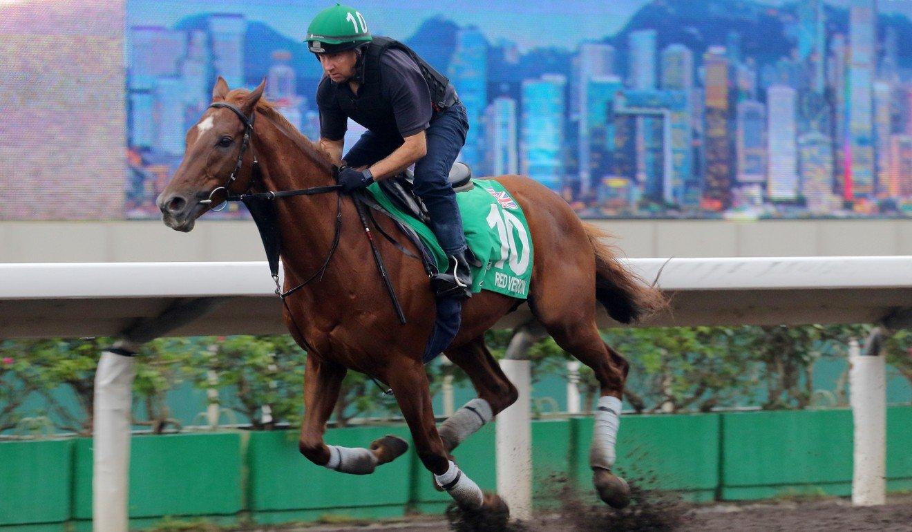 Red Verdon gallops ahead of last year's Hong Kong Vase.
