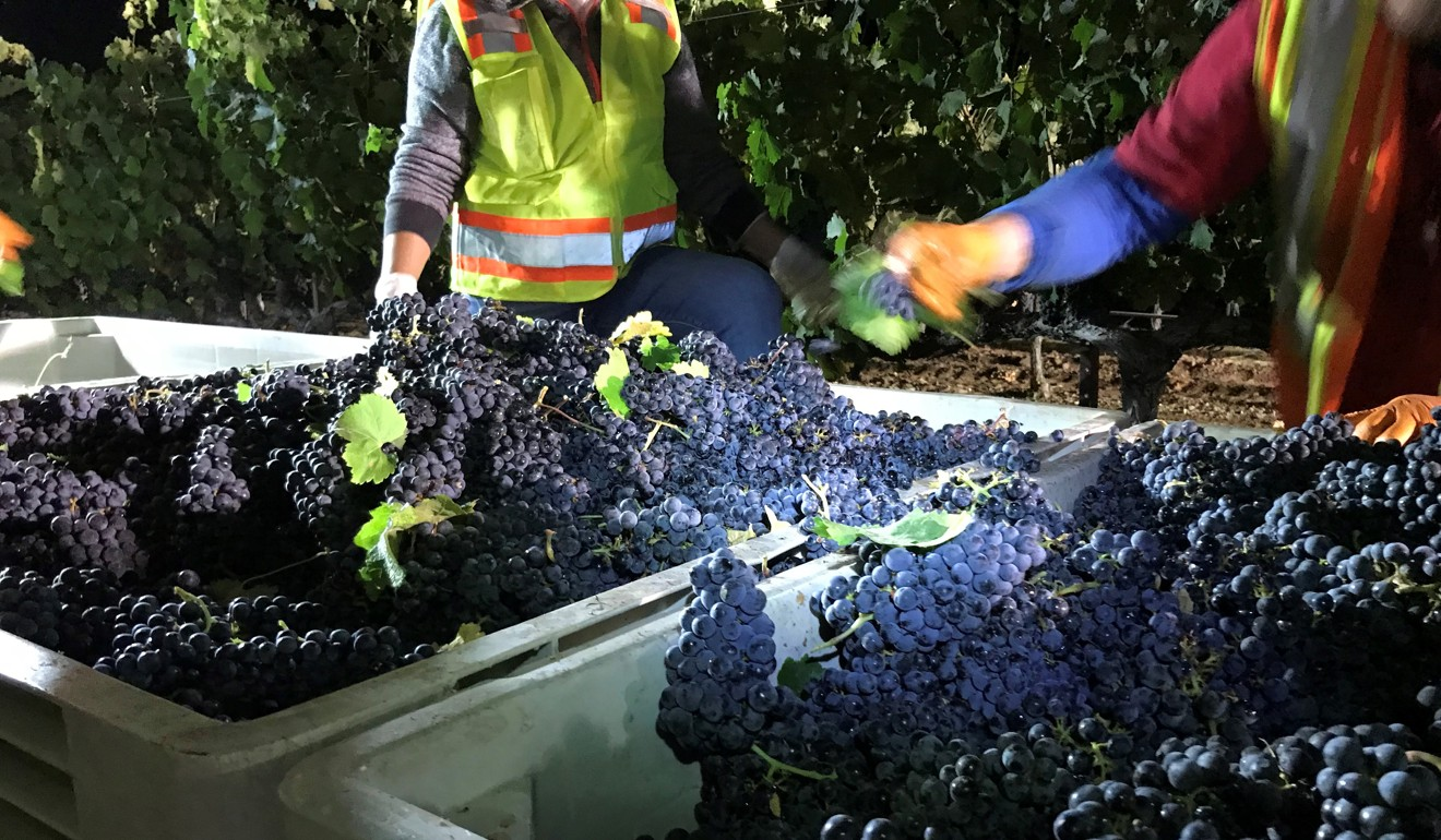 Thanks to trade war, California winemakers see their carefully cultivated market in China shrivel