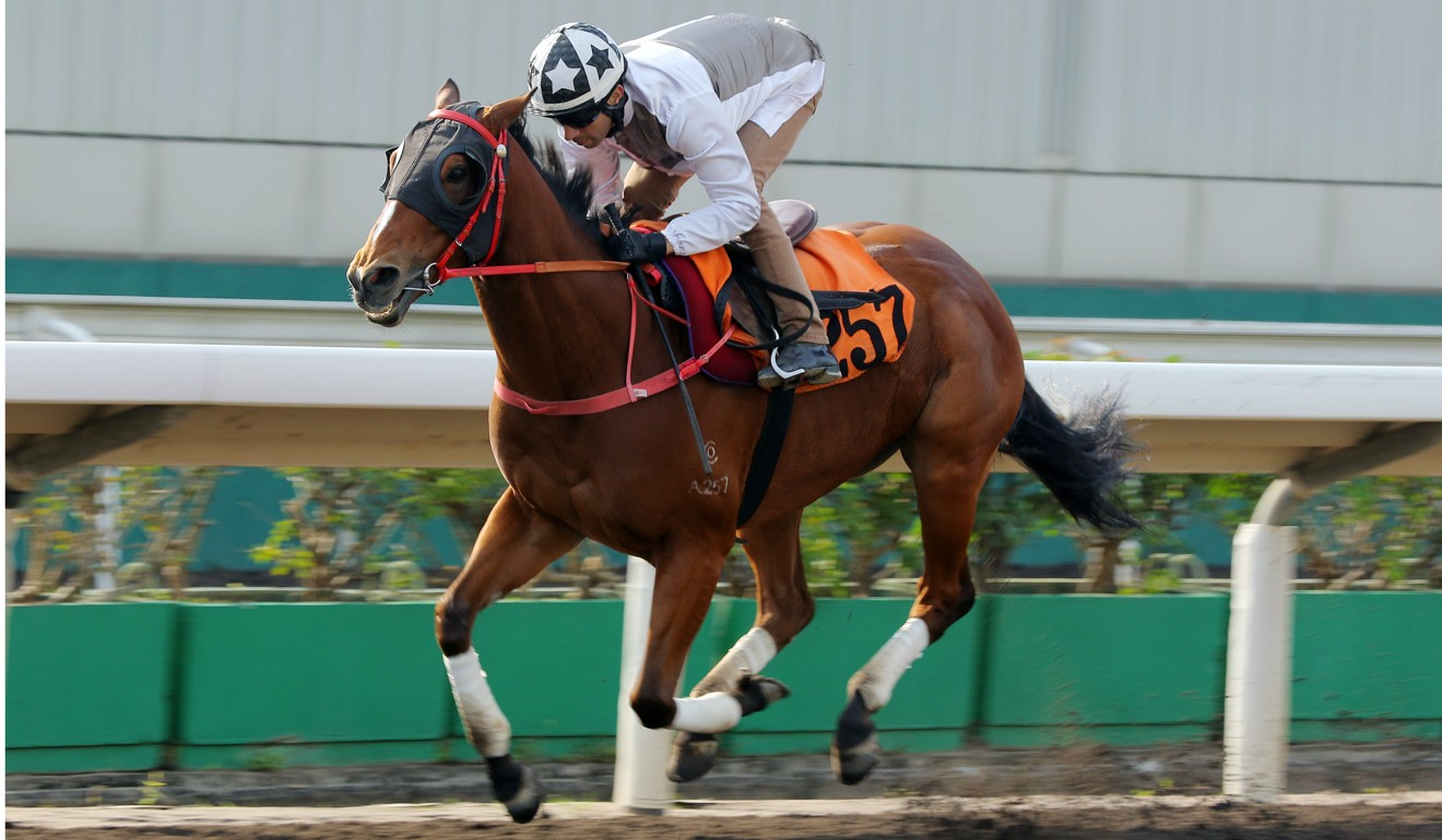 Ivictory is in good order ahead of his return to the racetrack.