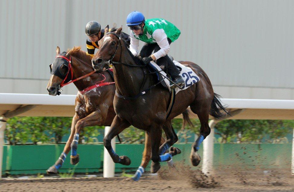 Pakistan Star looms up to win a trial earlier this month.