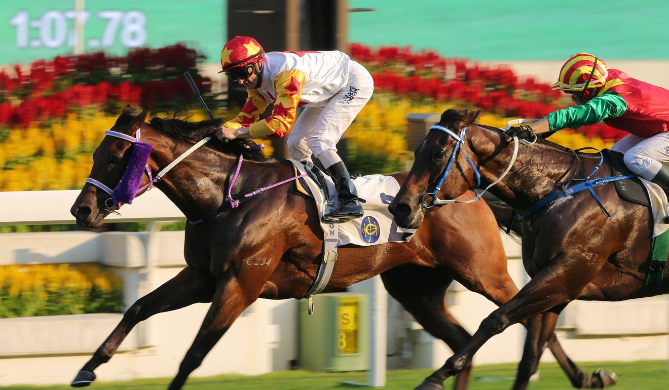 Mr Croissant holds on to win at Sha Tin this season.