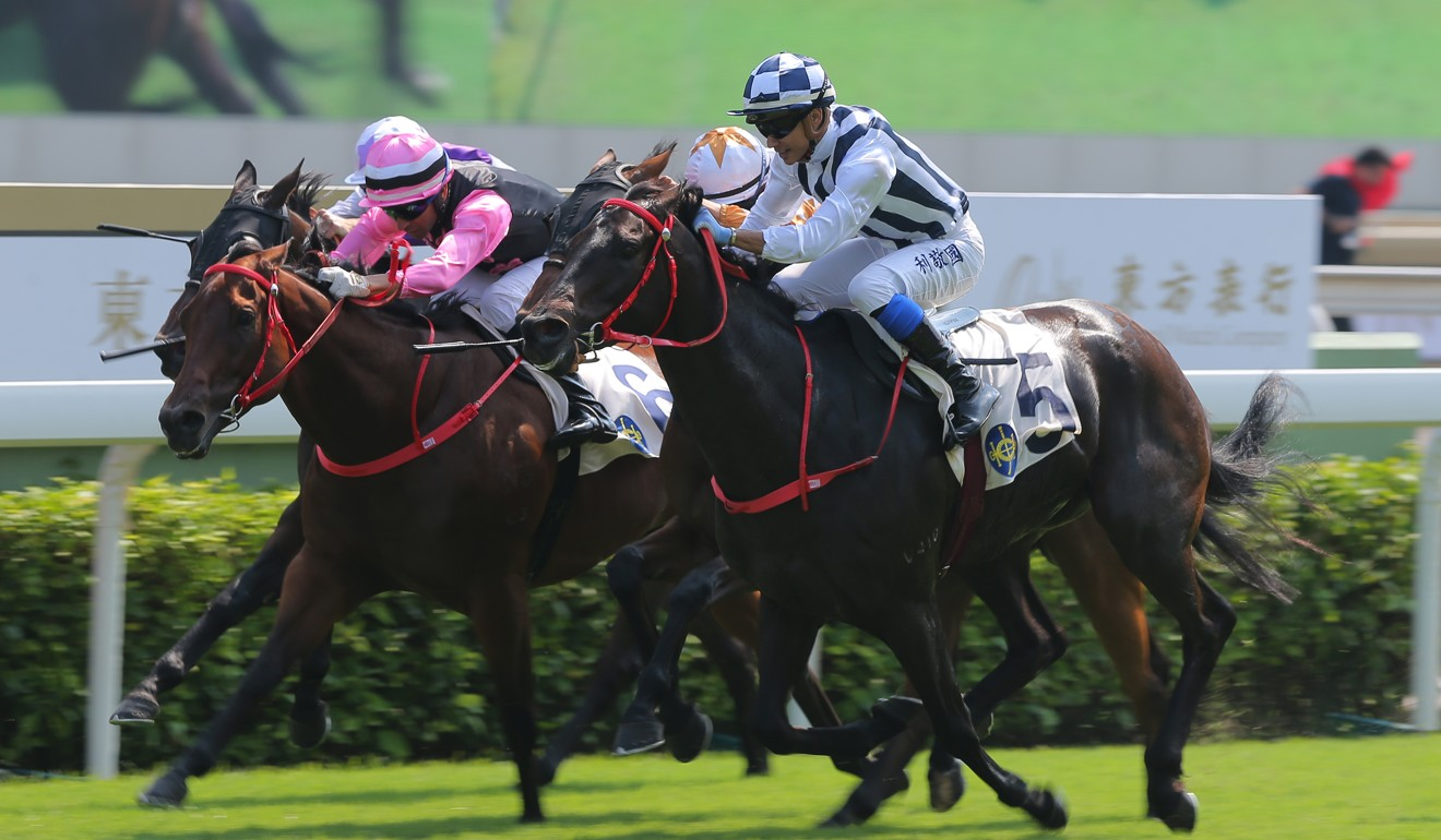 Seasons Bloom noses out Full Of Beauty to win at Sha Tin.