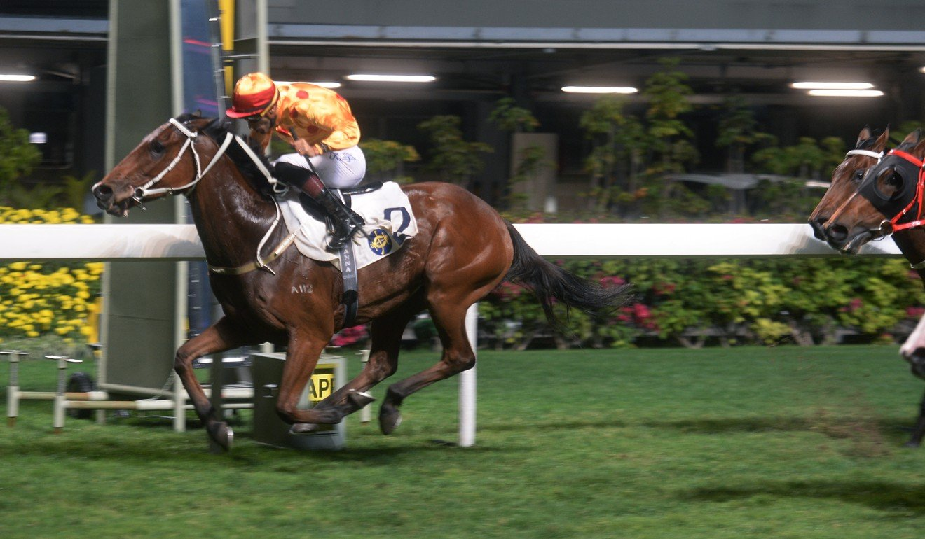 Gold Mount wins a race at Happy Valley.